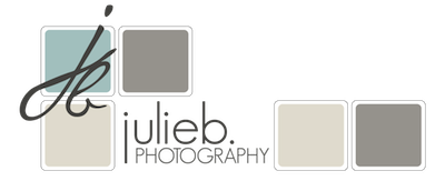 JulieB. Photography | Lifestyle Portrait Photographer | Santa Rosa | Sonoma County | California logo